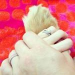 Jonna Walsh's 1.5 Round Diamond Ring