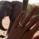 Helen Glover's Three-Stone Round Cut Diamond Ring